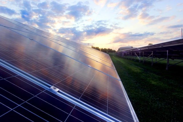 Photo of industrial scale solar panels taken at dawn in Columbia, Missouri. Photo by Lucia Bourgeois.